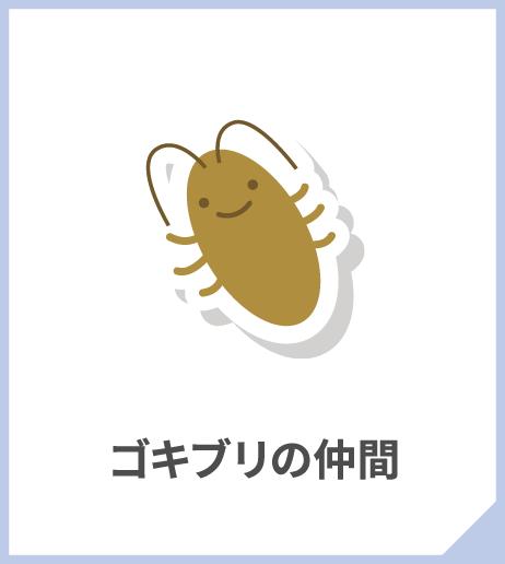 ゴキブリの仲間
