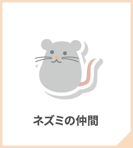 ネズミの仲間